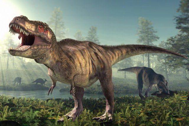 Datowanie kopalnych radiowęglowych dinozaurów